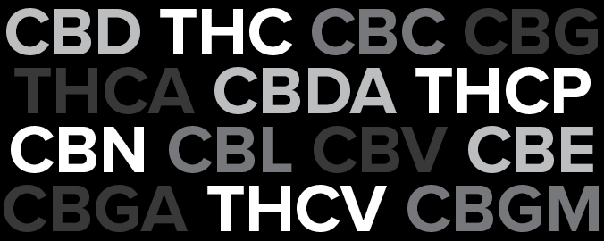 list of cannabinoids with grey and white text on black background