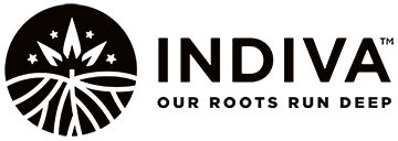 Press Release – INDIVA Grants Incentive Stock Options thumbnail