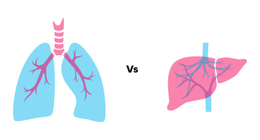 Lungs vs Liver