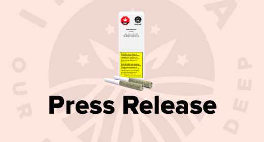 Press Release – Indiva Ships its White Russian Pre-rolls to the Ontario Cannabis Store
