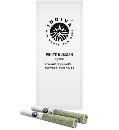 Indiva White Russian Pre-Roll Package