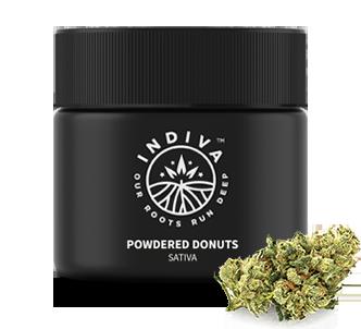 Indiva Powdered Donuts